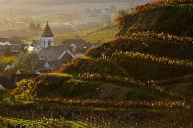 Vogtsburg-Achkarren im Herbst