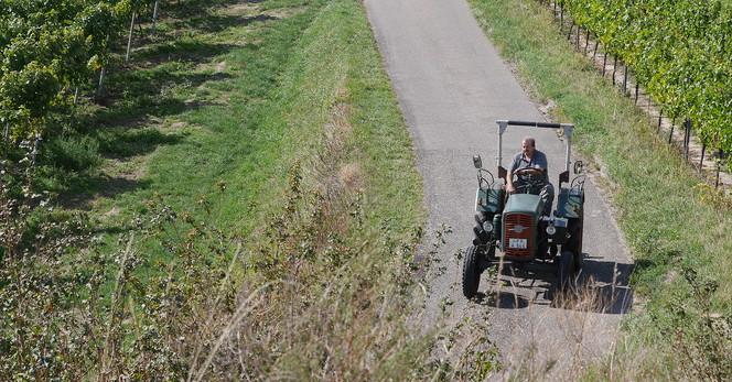 Traktor-Mondhalde.JPG