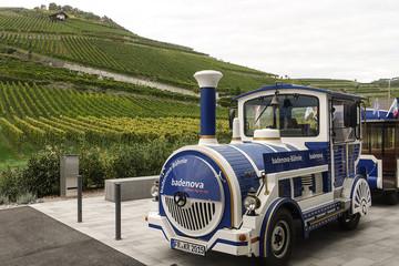 Fahrt mit dem Kaiserstuhl-Express - 12